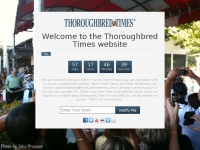 thoroughbredtimes.com