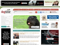 dogtime.com
