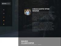 ebusinessnigeria.com