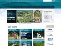 hitsshows.com