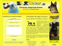 clever-pets-page.de Thumbnail