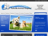 Yorkvilleanimalhospital.ca