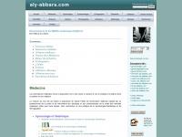 aly-abbara.com
