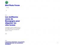 birdphotoforum.com