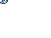 snaptortoise.com