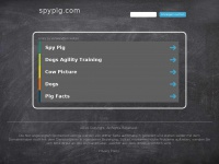 Spypig.com - SpyPig - Free Email Tracking System - Find out if your email has been read!