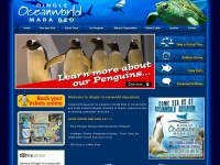 dingle-oceanworld.ie