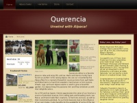 quealpaca.com