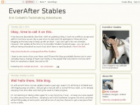 everafterstables.blogspot.com