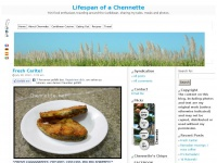 Lifespan of a Chennette — Trini food enthusiast, traveling around the Caribbean, sharing my tales, meals and photos.