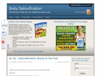 bodydetoxification.com