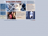 shelterdogs.org