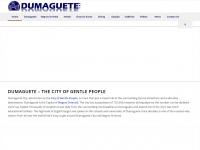 dumagueteinfo-net-service.com