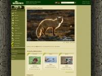 naturephoto-cz.com