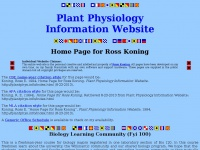 Home Page for Ross Koning