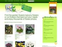 myflowerfinder.com