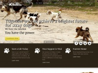 k9-rescue.org.uk Thumbnail