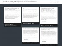 es-flash.com