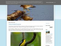 birdphotodiary.blogspot.com