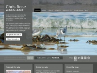 Chrisrose-artist.co.uk