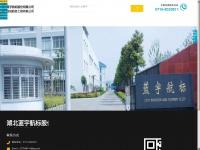 15hairloss.com