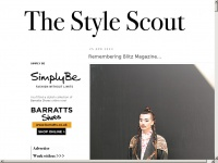thestylescout.co.uk Thumbnail