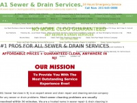 A1sewercleaning.com
