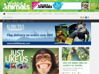 animalanswers.co.uk