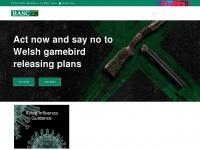 basc.org.uk Thumbnail