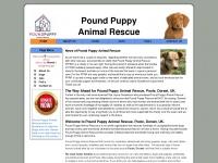 Poundpuppy.info
