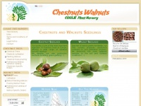 chestnut-walnut-trees.com