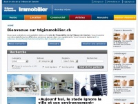 tdgimmobilier.ch