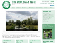 wildtrout.org Thumbnail
