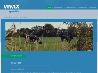 vivax.nl