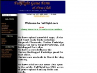 fullflight.com