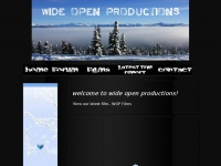 wideopenproductions.com