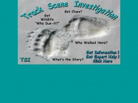 tracksceneinvestigation.com