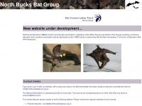 northbucksbatgroup.org.uk