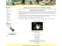 gloucestershire-butterflies.org.uk