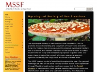 mssf.org
