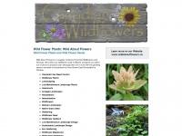 wildflowerplants.ca