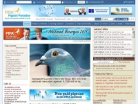 Pipa.be - PIPA | Racing pigeons for sale | Pigeon news | Pigeon race results | Pigeon Paradise