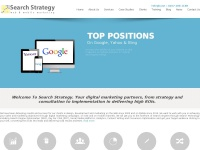 Search-strategy.co.uk