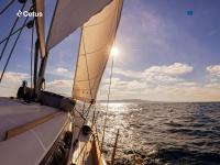 cetusglobal.com