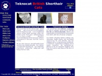Teknocat.co.uk