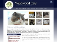 willowood-cats.co.uk Thumbnail