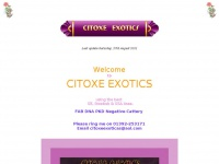 citoxe.co.uk