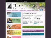 thecatpractice.com