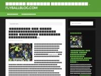 flyballblog.com
