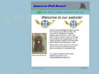 immerzupuli.com